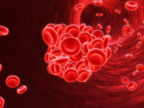 Le système immunitaire: quelques conseils pour le rendre plus performant